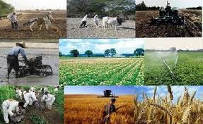 پاورپوینت بررسی نقش دهیاریها در توسعه روستایی